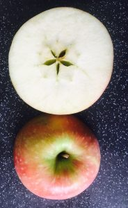 Apple cut across to show the star shape inside